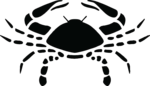Cancer Zodiac Symbol PNG Transparent icon png