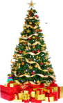 Christmas Tree PNG Free Download icon png
