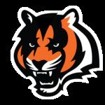 Cincinnati Bengals PNG Photo icon png