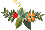 Decorative Leaf PNG Pic icon png