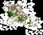 Decorative Leaf PNG Transparent Picture icon png