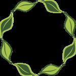 Decorative Leaf Transparent Background icon png