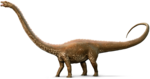 Diplodocus PNG Picture icon png