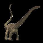 Diplodocus PNG Transparent Image icon png