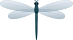 Dragonfly PNG Transparent Picture icon png