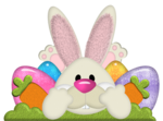 Easter Bunny PNG File icon png