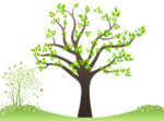 Family Tree PNG Free Download icon png