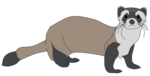 Ferret PNG Clipart icon png