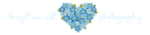 Forget Me Not PNG Photo icon png