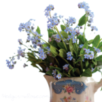 Forget Me Not PNG Pic icon png