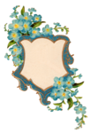 Forget Me Not PNG Picture icon png