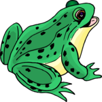 Frog Clip Art PNG icon png