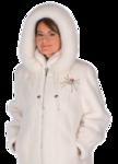 Fur Coat Transparent Background icon png