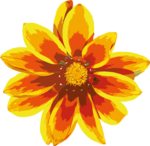 Gazania PNG Clipart icon png