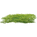 Ground PNG Clipart icon png