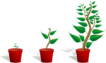 Growing Plant PNG Transparent icon png