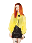 Hayley Williams PNG Free Download icon png