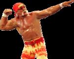 Hulk Hogan PNG Transparent Image icon png