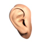 Human Ear PNG File icon png