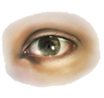 Human eye icon png