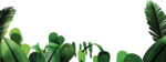 Jungle PNG Picture icon png