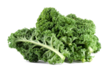 Kale PNG File icon png