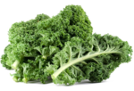 Kale PNG Free Download icon png