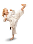 Karate PNG File icon png