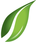 Leaf Transparent Background icon png