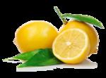 Lemon PNG Pic icon png