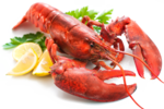 Lobster Transparent PNG icon png