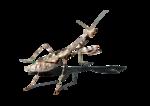 Mantis PNG Free Download icon png