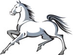 Mustang Horse Transparent PNG icon png
