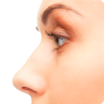 Nose PNG Transparent icon png