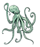Octopus PNG File icon png