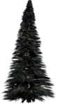 Pine Tree PNG Photos icon png