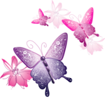 Pink Butterfly icon png