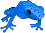 Poison Dart Frog PNG Transparent icon png