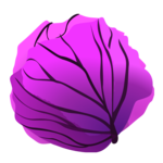 Purple Cabbage Clip Art PNG icon png