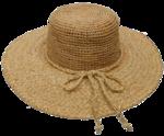 Raffia Hat Transparent PNG icon png