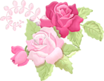 Romantic Pink Flower Border PNG Picture icon png