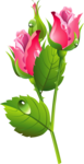 Romantic Pink Flower Border PNG Transparent Image icon png