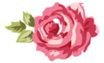 Romantic Pink Flower Border PNG Transparent Picture icon png