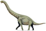 Sauropod PNG Free Download icon png
