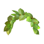Snapchat Flower Crown PNG Image icon png