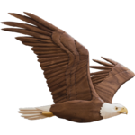 Soaring Eagle PNG Transparent Image icon png