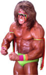 The Ultimate Warrior PNG File icon png