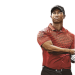 Tiger Woods PNG File icon png