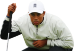 Tiger Woods Transparent Background icon png
