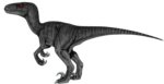 Velociraptor PNG Transparent HD Photo icon png